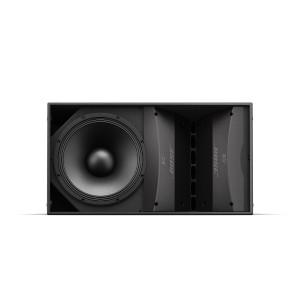 BOSE ArenaMatch AM20 Hangsugárzó 100x20